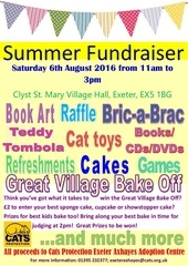 summer fun day poster
