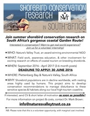 2016 17 southafrica shorebird internship announcement