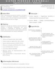 PDF Document cv victor