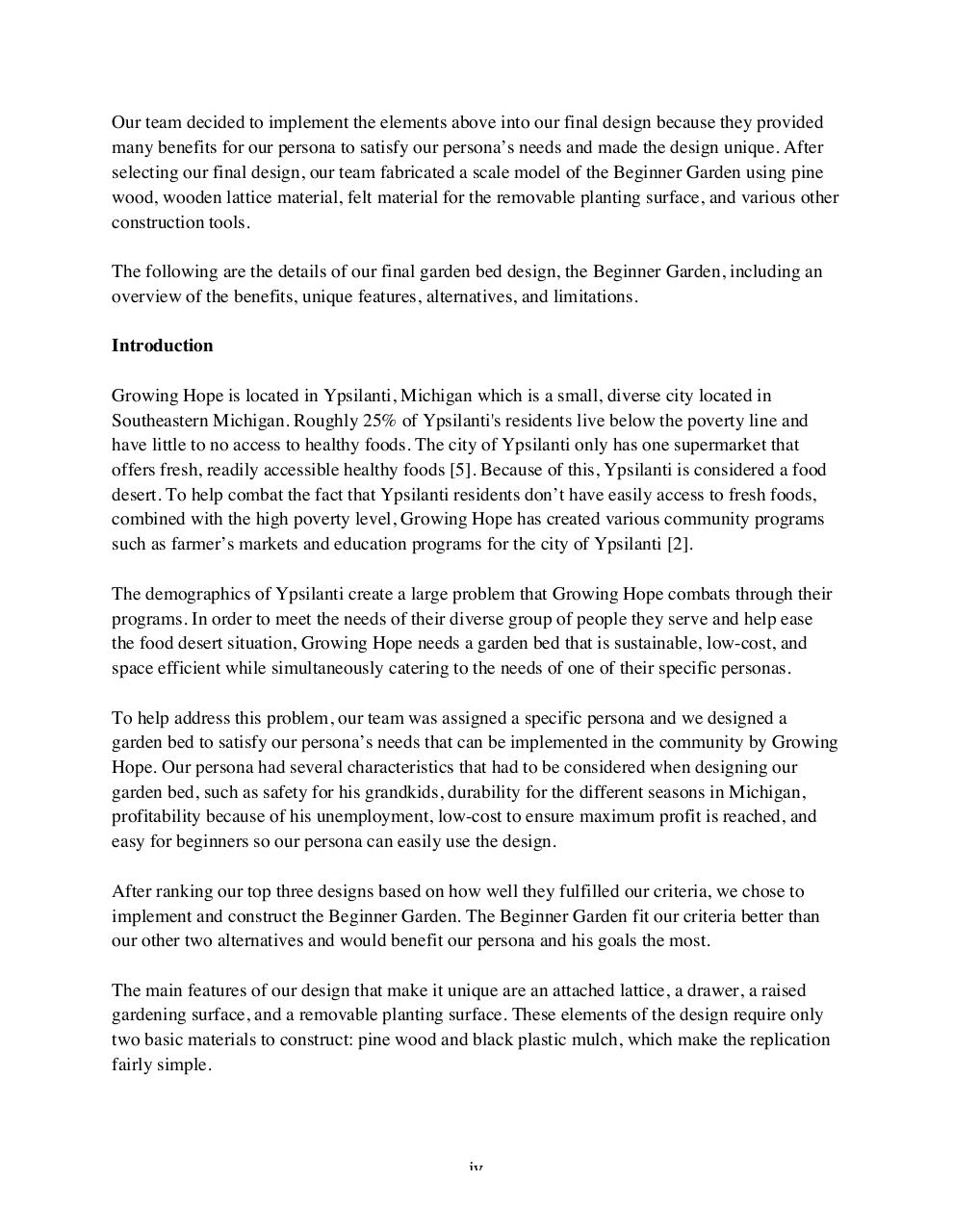 TeamTrademarkFinalReport.pdf - page 4/21