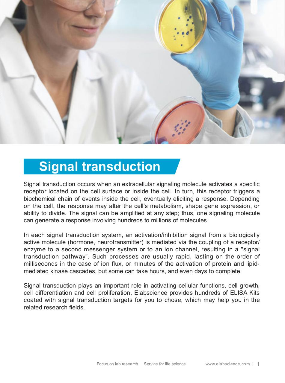 elisa-kits-for-signal-transduction.pdf - page 2/19