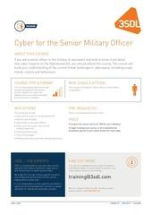 cyber for the senior military officer