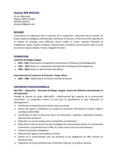 PDF Document cv francais di