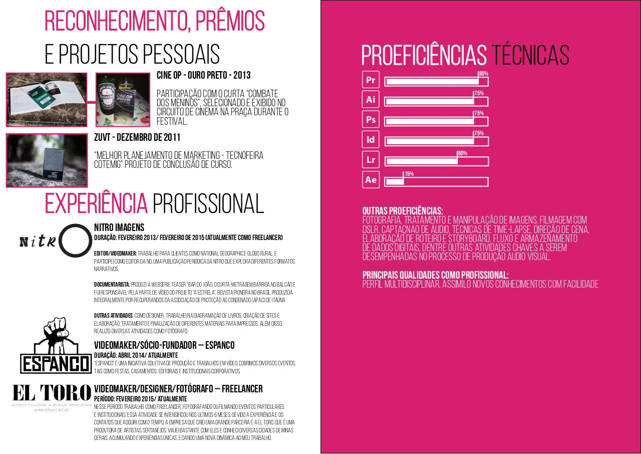 Document preview curriculo Gabriel Reis .pdf - page 3/4