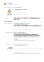 PDF Document cv borovskikh it
