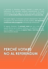 PDF Document no al referendum