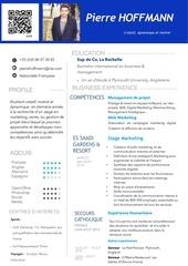 PDF Document cv francais bba4