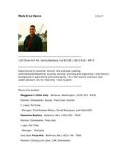 PDF Document mark vance employment resume