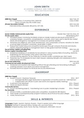 PDF Document anonymized resume