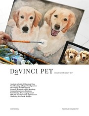 davinci pet digital strategy 2017