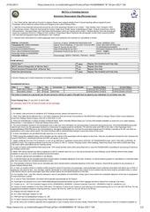 PDF Document ticket