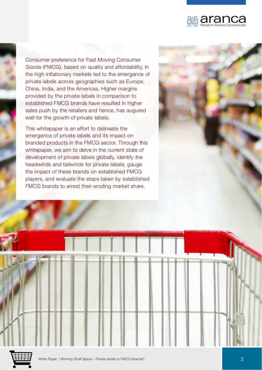 Winning Shelf Space Private Labels or FMCG Brands.pdf - page 3/14