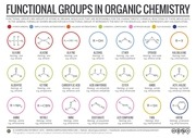 1c organic functional groups 1