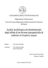 PDF Document tesi
