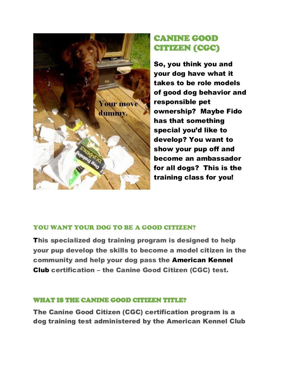 Canine Good Citizen By Jason Roe Pdf Archive