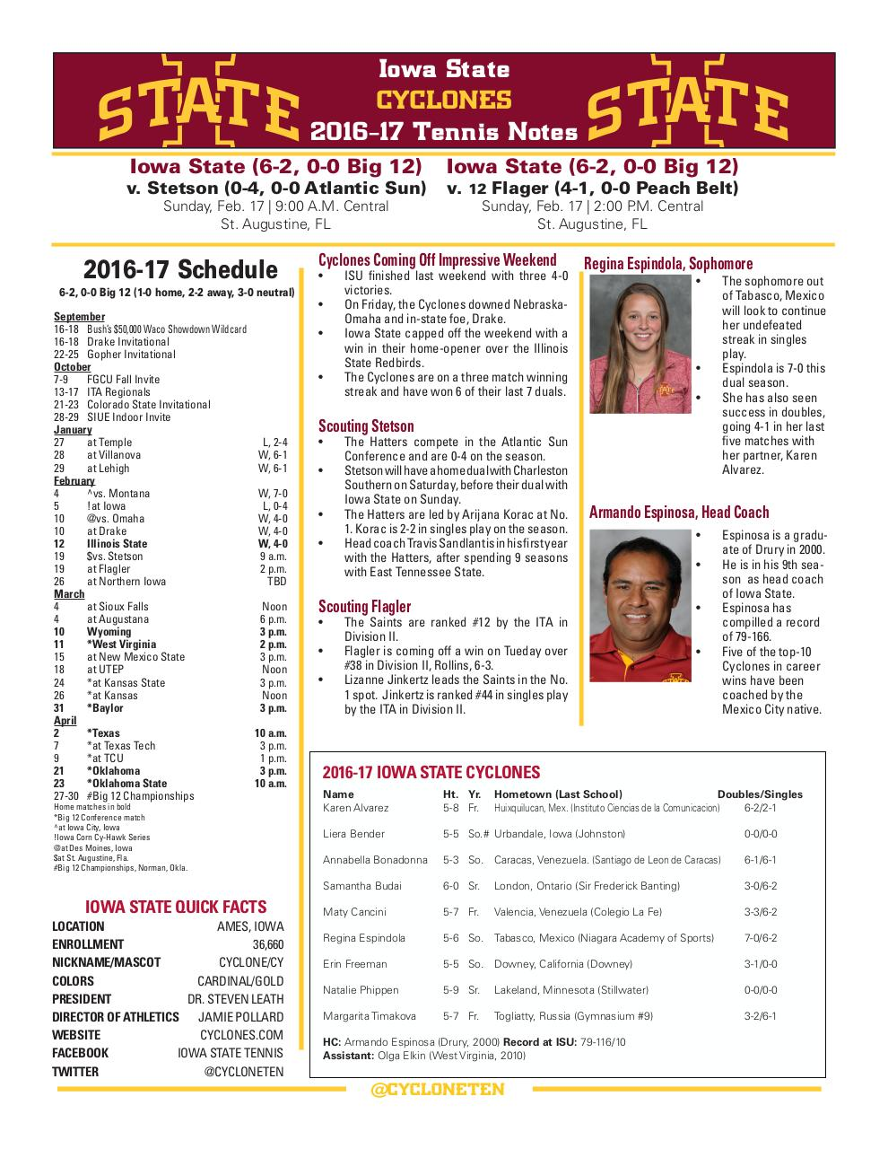 Document preview Tennis Note Page PDF.pdf - page 1/1
