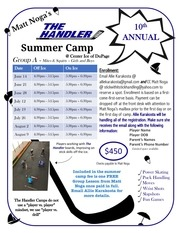 summer camp flyer 2017 hosting