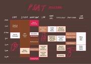 pmt schedule 2017