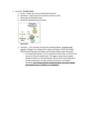 nucleic acids skillz study guide