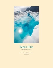 report title