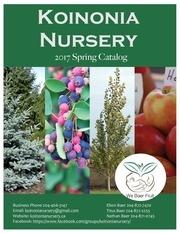 koinonia nursery 2017 catalog 25 pdf