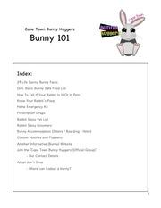 bunny 101 2016 11 01