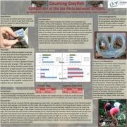 crayfishpresentation