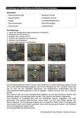 PDF Document herstellung von biodiesel im schullabor