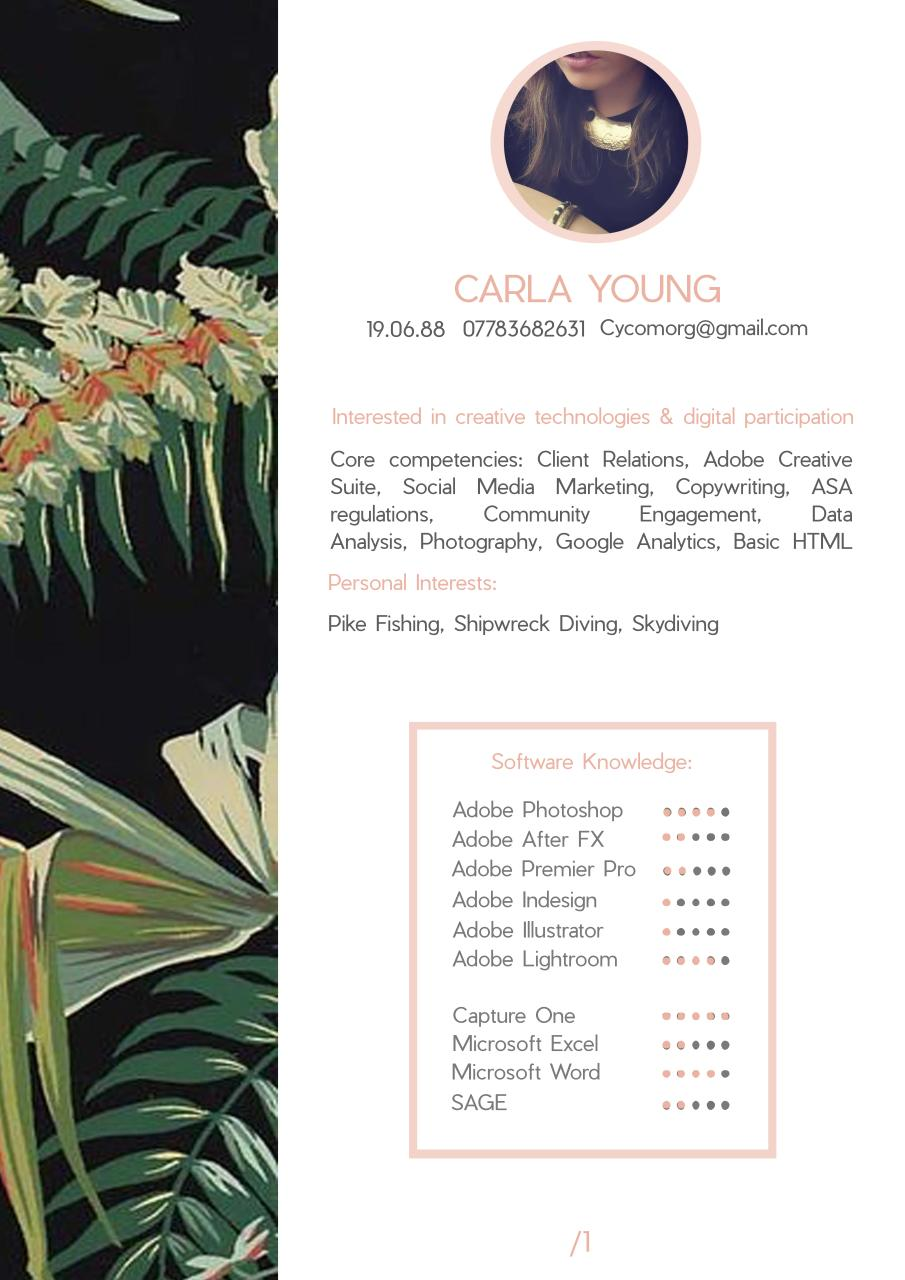 Carla Young CV Compressed.pdf - page 1/4