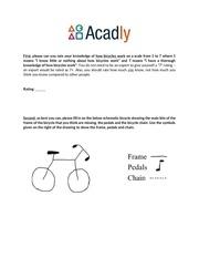 cycology 1