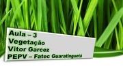 aula3 vegetac