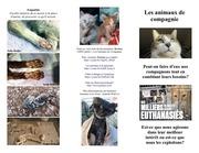 PDF Document animauxavecnous francais