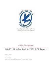 dgs report new