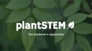 PDF Document plant stem pitch 1