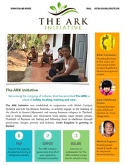 ark initiative