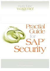practical guide for sap security 2nd 1