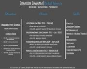 professional resume infographic