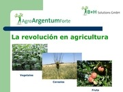PDF Document agroargentum forte presentation spanisch