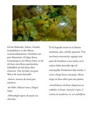 alino de hortalizas para patatas
