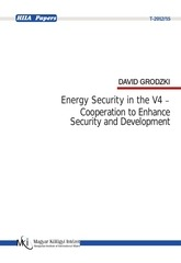 david grodzki energy security in the v4