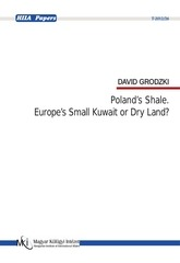 david grodzki poland s shale europe s small kuwait