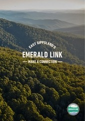 tws emerald link report web 5