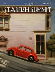 starfish summits december 2017