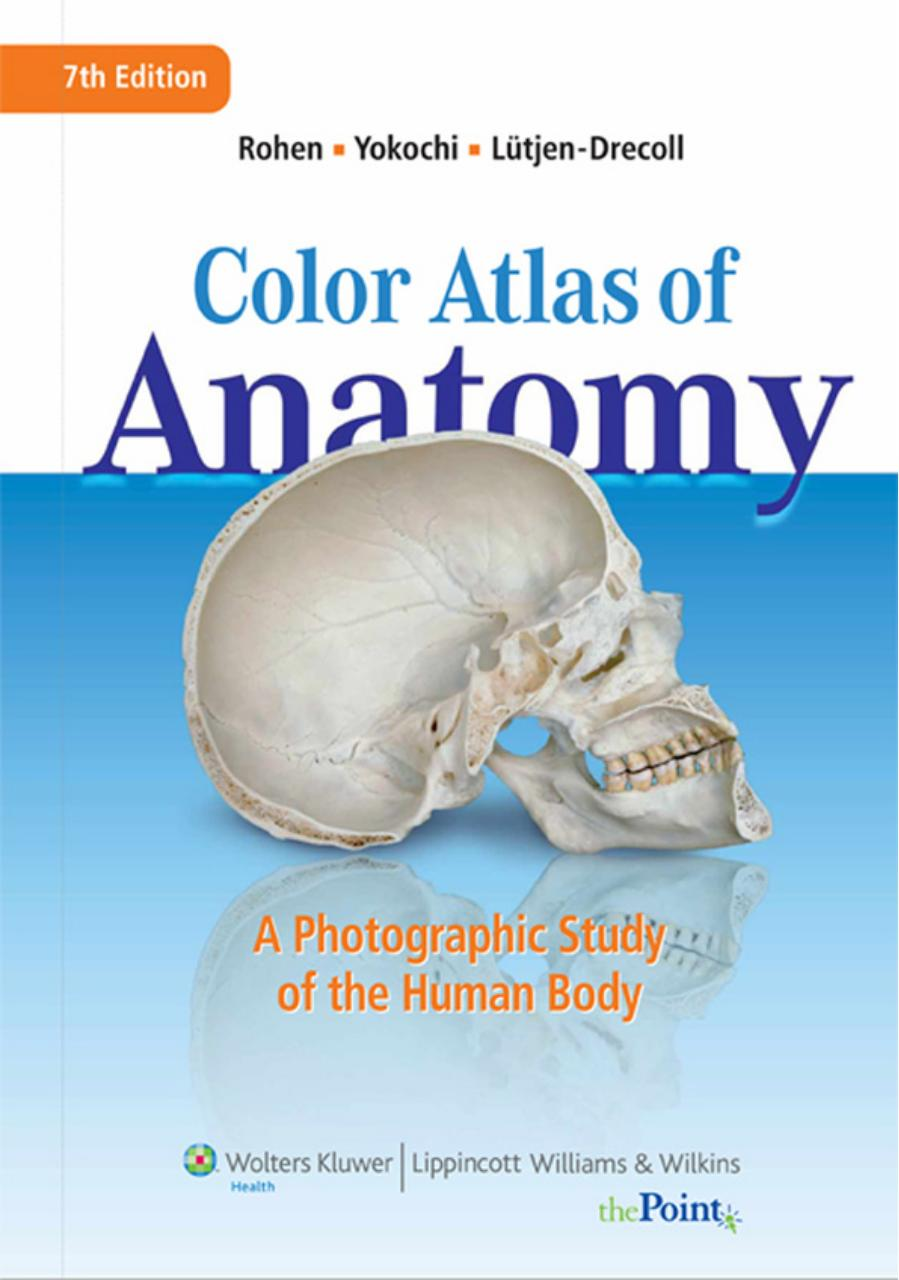 photog study of the human body.pdf - page 1/548