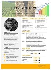 lucas infografico