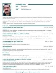 wael new resume