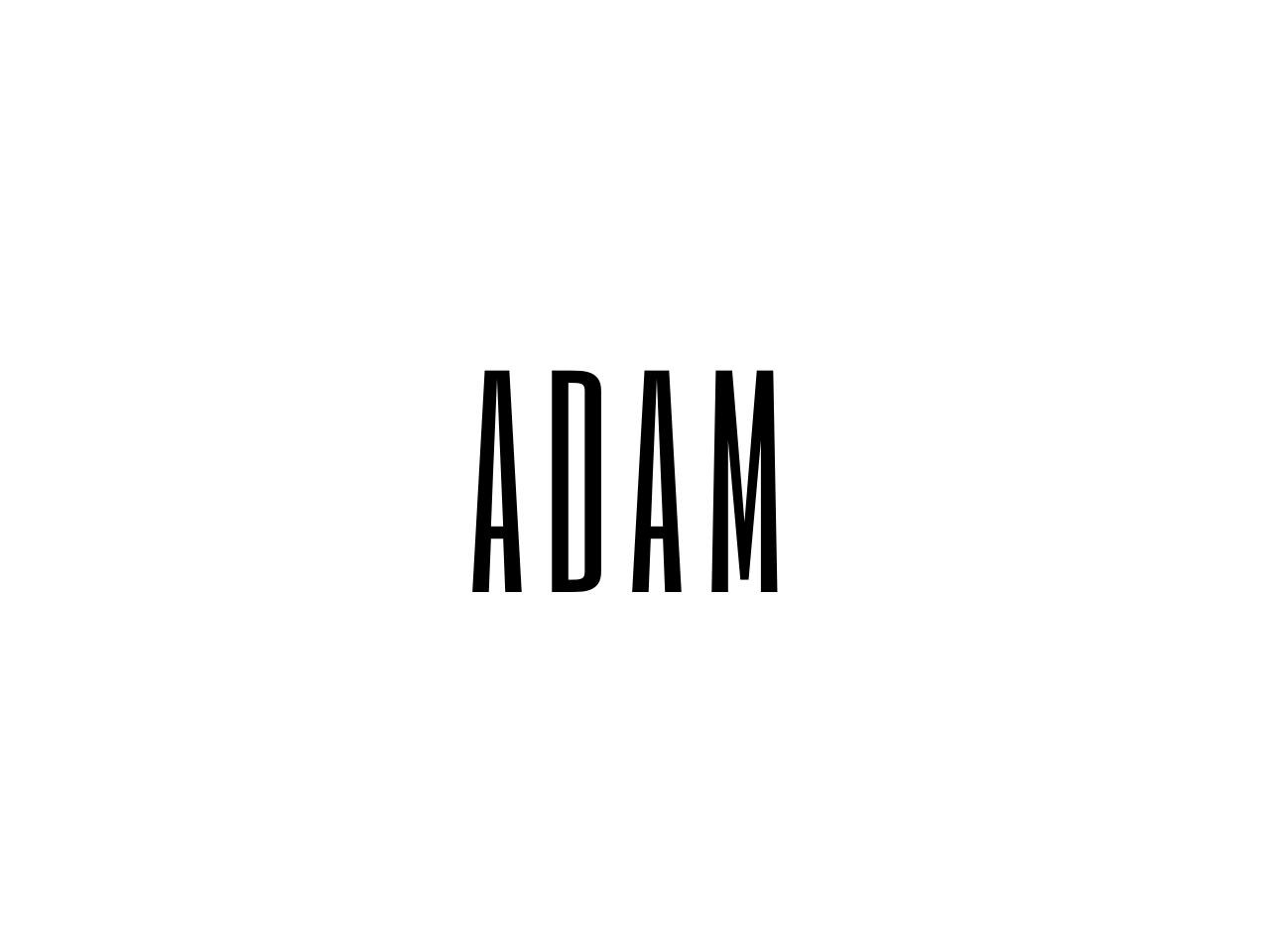 Document preview ADAM.pdf - page 1/5