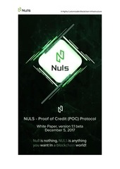 nuls whitepaper1 1 germany