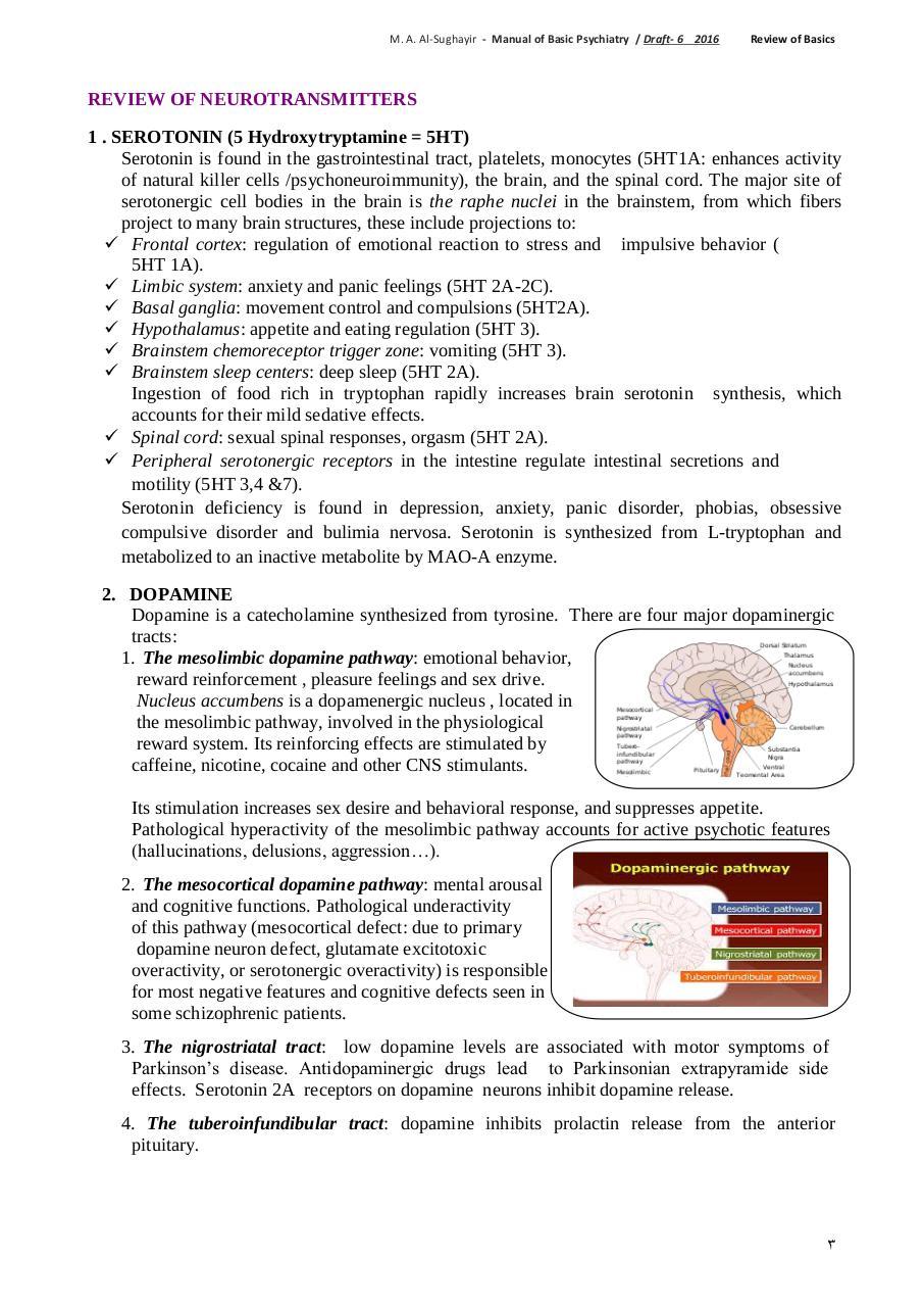 Review of Basic Neuroscience by user - PDF Archive