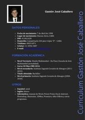 PDF Document gast n caballero curr culum disenador